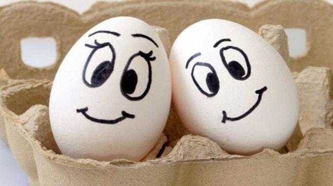 Что нужно знать для того что бы проверить яйца на свежесть