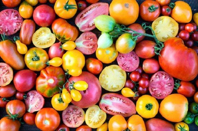 Как заморозить на зиму помидоры и огурцы в домашних условиях