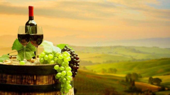 Винный этикет - какое вино, когда,  и к каким блюдам подавать