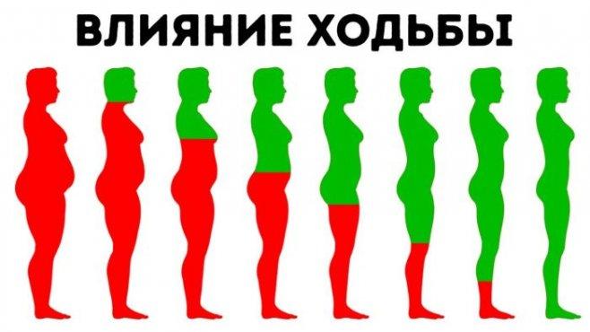 Что будет с вашим телом при ежедневной ходьбе