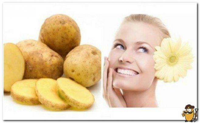 Картофель: полезные свойства, применение в косметологии, рецепты