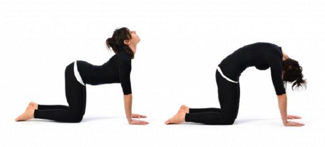 Как укрепить спину: упражнения  для идеальной осанки