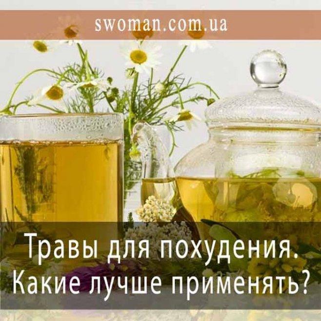 Эффективные и полезные травы для похудения