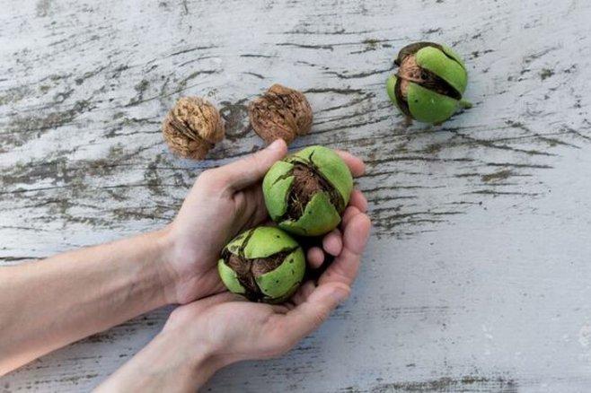 Как отмыть руки от орехов в домашних условиях